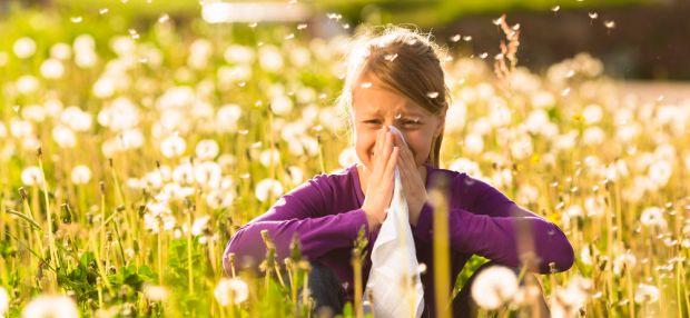 Чем опасен аллергический ринит