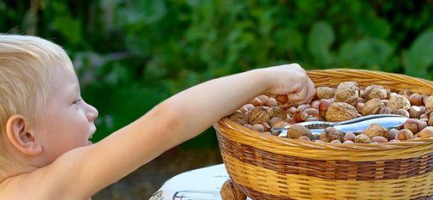 Изображение Дефицит железа у детей на Schoolofcare.ru!